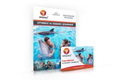 Сертификат на плавание с дельфинами